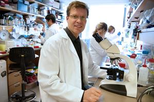 Matthias Hebrok, Ph.D.