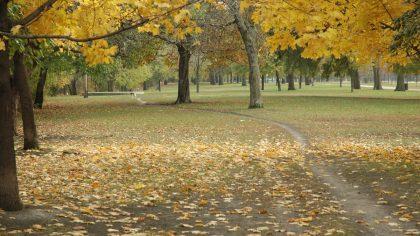horner+park+flickr